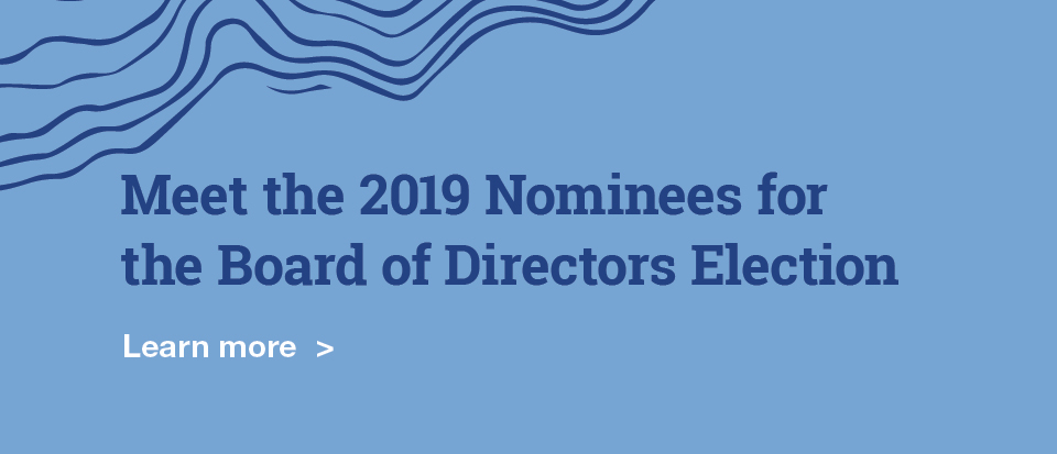 Meet our Director nominees
